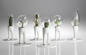 domsai-creative-terrariums-7