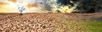 запустялото-царство-лазаровден-еклектика