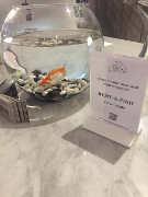 07092017-rent-a-fish-3